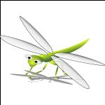 Schmuck mit Libellenmotiven