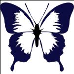 Schmuck mit Schmetterlingsmotiven